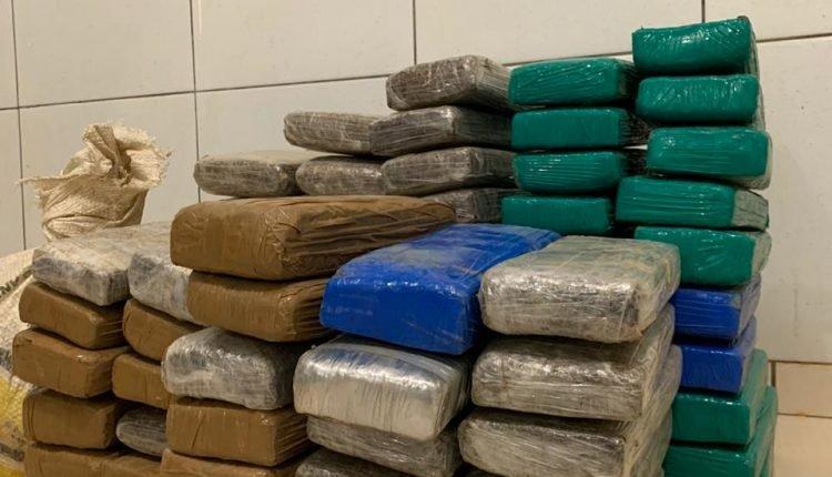 Tabletes de maconha apreendidas pela Polícia Civil